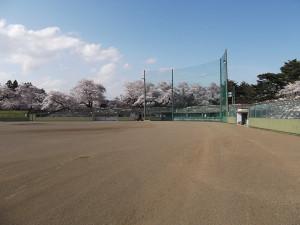 水沢公園体育施設野球場